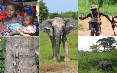Projekt- und Tourismus Reise