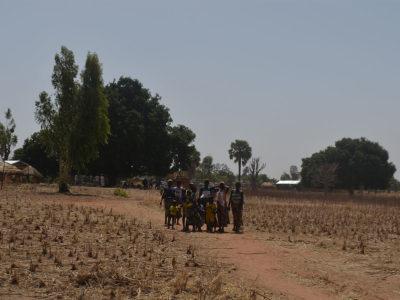 In der Trockenzeit ist es Staubtrocken. Nur ein paar Bäume behalten ihre Grünen blätter.