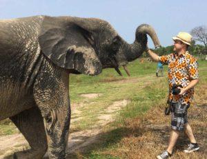 Begegnung mit den Elefanten in Djamde