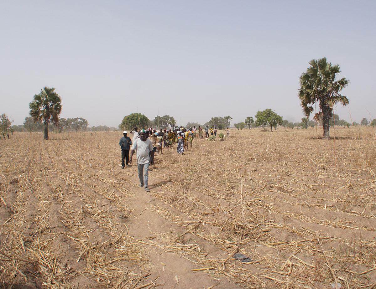 Trockenzeit im Norden Togos